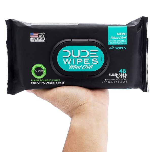 DUDE Wipes Flushable Wet Wipes Dispenser, Mint Chill