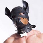 Dog Training Hood