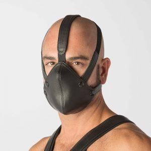The Inhibitor Mask
